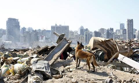 Έκρηξη στη Βηρυτό: Ο ΠΟΥ κάνει έκκληση για 15 εκατ. δολάρια - Η UNICEF για 8,25 εκατ.