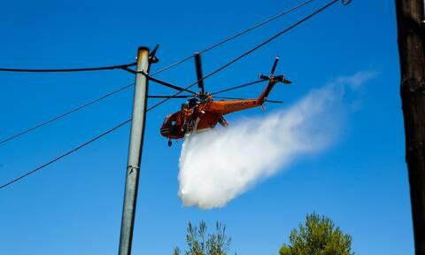 Συναγερμός στην Πυροσβεστική: Μεγάλη φωτιά στη Μάνη - Εκκενώνεται οικισμός