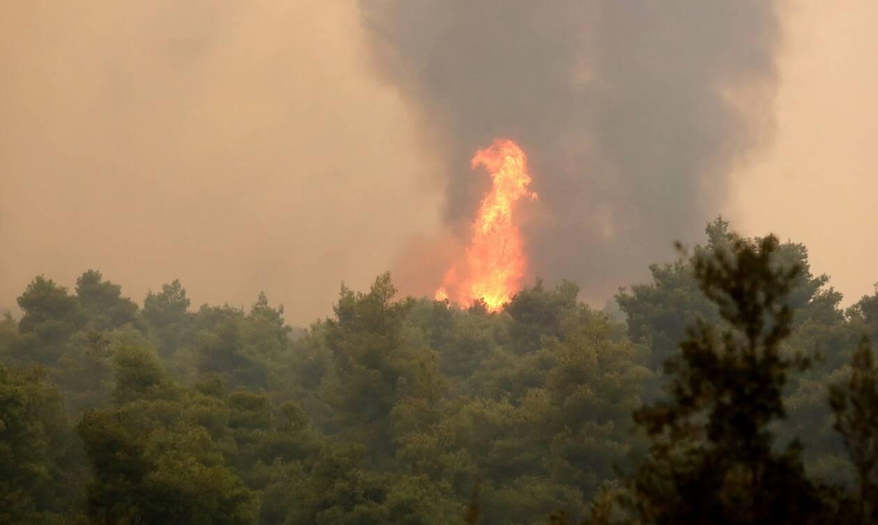 Φωτιά στα Κύθηρα: Υπό πλήρη έλεγχο η πυρκαγιά στην περιοχή Φράτσια