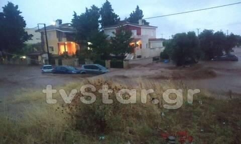 Θεομηνία στην Εύβοια: Πληροφορίες για νεκρή γυναίκα - Πλημμύρες και καταστροφές