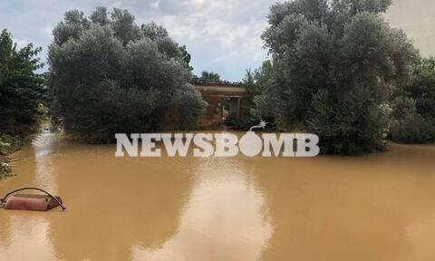 Νεκροί Εύβοια: Τραγωδία - Βρήκαν πνιγμένο το μωρό τους μέσα στο πλημμυρισμένο σπίτι