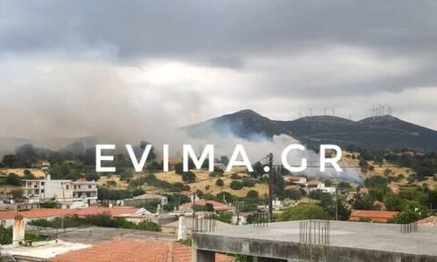 Φωτιά ΤΩΡΑ στην Εύβοια