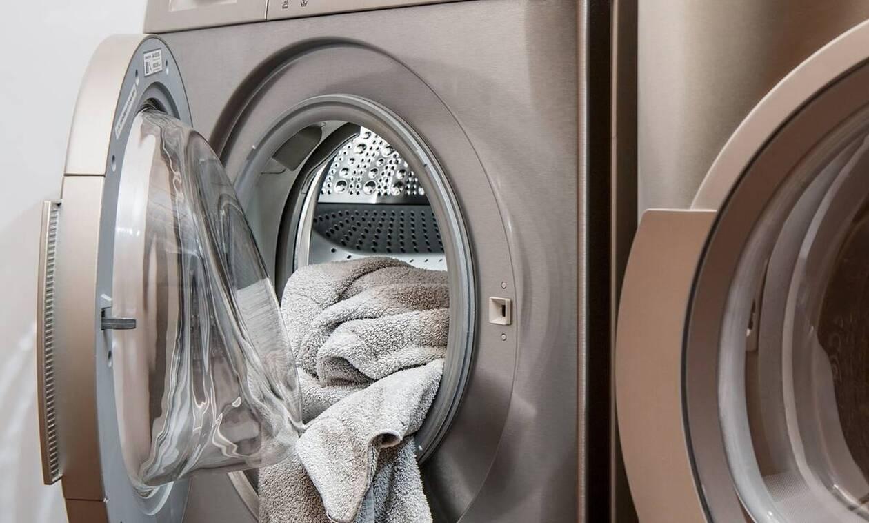 Γυναίκα βρήκε πύθωνα στο πλυντήριο - Νόμιζε ότι ήταν ρούχο (pic)