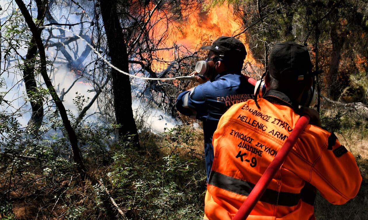 Έβρος: Φωτιά στο Σουφλί
