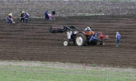 Αγρότες: Έκπτωση φόρου έως 2.100 ευρώ - Ποιοι είναι οι δικαιούχοι