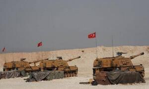 «Πόλεμος» Ελλάδας - Τουρκίας: Τι κάνει νιάου νιάου στα κεραμίδια;