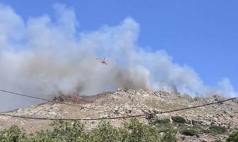 Χανιά: Ανεξέλεγκτη μαίνεται η φωτιά - Κάηκαν σπίτια