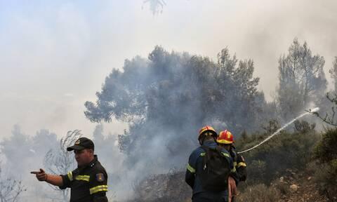 Φωτιά ΤΩΡΑ στο Μεσολόγγι: Συναγερμός στην Πυροσβεστική
