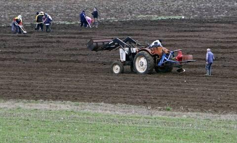 Φορολογικές δηλώσεις 2020: Ποιοι αγρότες κερδίζουν φέτος έκπτωση φόρου έως 2.100 ευρώ