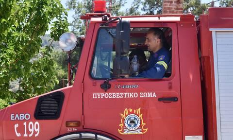 Κρήτη: Μεγάλη φωτιά κοντά στο χωριό Δεμάτι