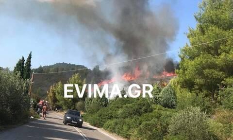 Μεγάλη φωτιά στην Εύβοια - Κοντά σε σπίτια οι φλόγες