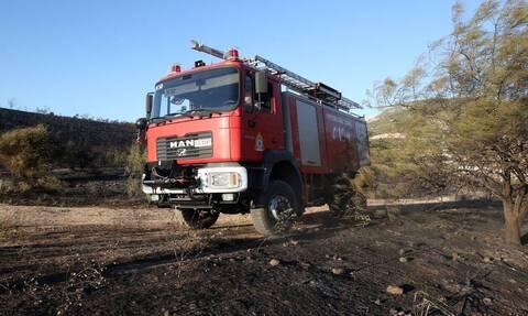 Μεσολόγγι: Υπό μερικό έλεγχο η φωτιά σε δασική έκταση στην κοινότητα Φραγκουλέικα