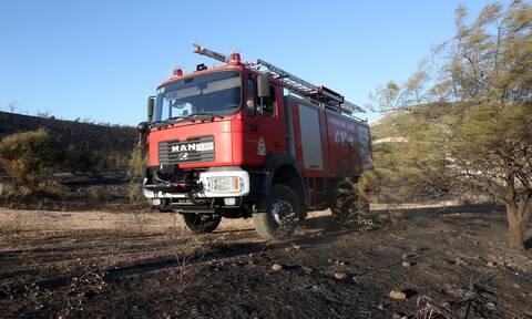 Εύβοια: Οριοθετήθηκε η φωτιά στις Ροβιές