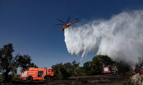 Φωτιές στην Ελλάδα: Υπό μερικό έλεγχο οι δασικές πυρκαγιές σε ολόκληρη τη χώρα