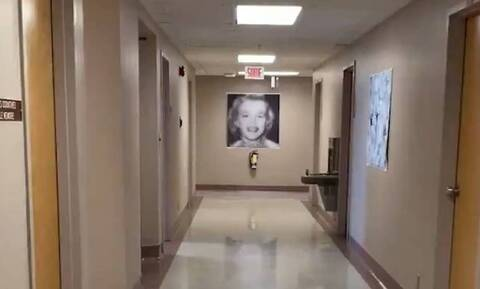 Νομίζετε πως βλέπετε κοπέλα στον πίνακα; Θα τρελαθείτε με την αλήθεια (vid)