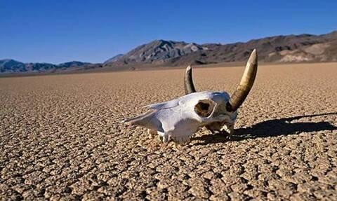 Κοιλάδα Θανάτου: Η υψηλότερη θερμοκρασία της 100ετίας - Άγγιξε τους 54,4 βαθμούς