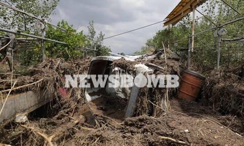 Πλημμύρες Εύβοια: Συνεχίζονται οι αυτοψίες για την εκτίμηση των ζημιών