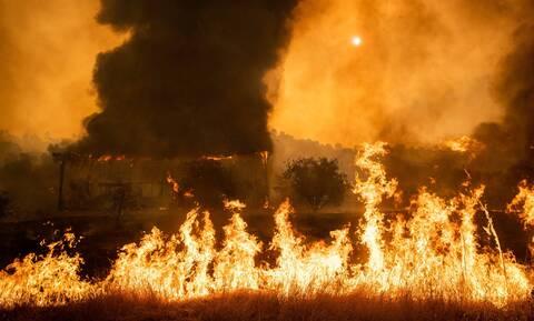 ΗΠΑ: Μαίνονται οι πυρκαγιές στην Καλιφόρνια - Εντυπωσιακό βίντεο με ΙΧ που περνάει τις φλόγες