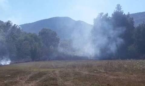 Φωτιά ΤΩΡΑ στην Πρέβεζα (video)