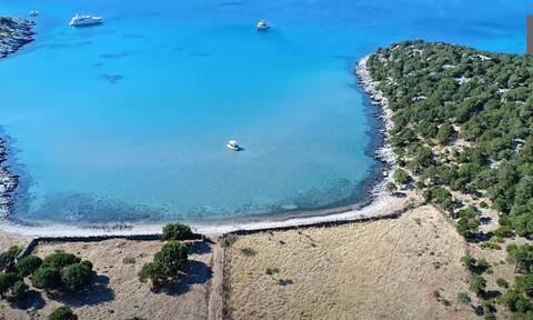 Εύβοια: Αυτό είναι το «πιο εξωτικό... μαντρί της Ελλάδας» (vid)