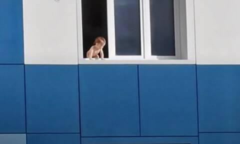 Βίντεο: Μωράκι σώζεται την τελευταία στιγμή!