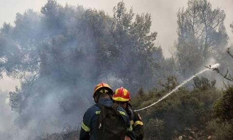 Οριοθετήθηκε η πυρκαγιά που ξέσπασε στην Ελασσόνα