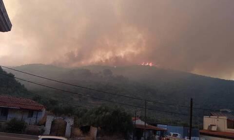 Μαίνεται η πυρκαγιά στην ανατολική Μάνη: Δύσκολη νύχτα με τις φλόγες σε τρία μέτωπα