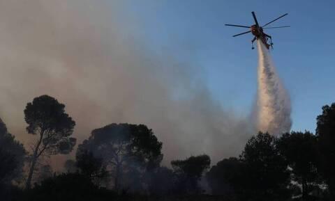Φωτιά στη Μάνη: Συνεχίζεται η μάχη με τις φλόγες – Ξεκίνησαν ρίψεις τα εναέρια μέσα
