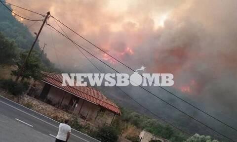 Φωτιά στη Μάνη: Εμπρησμό «βλέπει» η Πυροσβεστική
