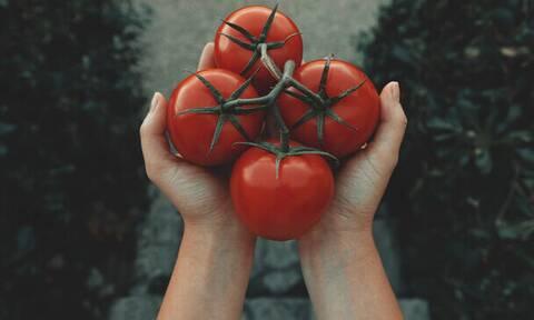 Αν καταψύξεις έτσι τις ντομάτες, δε θα χρειαστείς ποτέ ξανά κονσέρβα