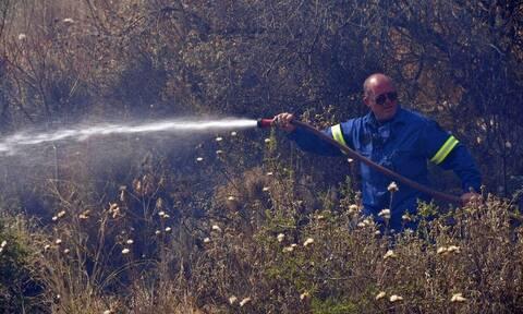 Αλεξανδρούπολη: Υπό μερικό έλεγχο η πυρκαγιά στους Ασβεστάδες Έβρου