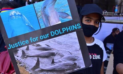 Μαυρίκιος: Αντικυβερνητική διαδήλωση μετά την πετρελαιοκηλίδα και τον θάνατο 40 δελφινιών