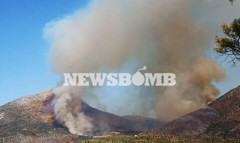 Φωτιά ΤΩΡΑ: Πύρινος εφιάλτης στις Μυκήνες - Εκκενώθηκε ο αρχαιολογικός χώρος (pics&vids)