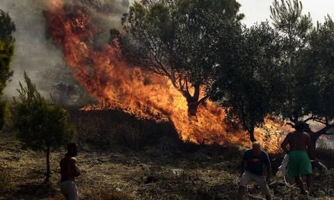 Φωτιά ΤΩΡΑ στη Ζάκυνθο - Καίει δασική έκταση