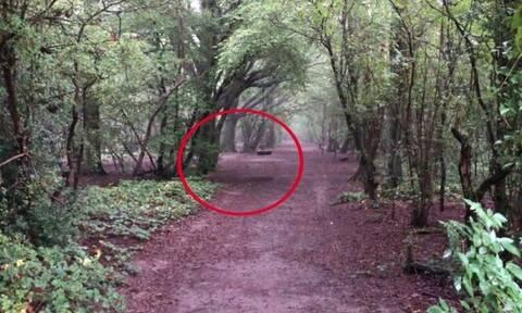 Βίντεο: «Φάντασμα» κάνει κούνια σε σκοτεινό δάσος