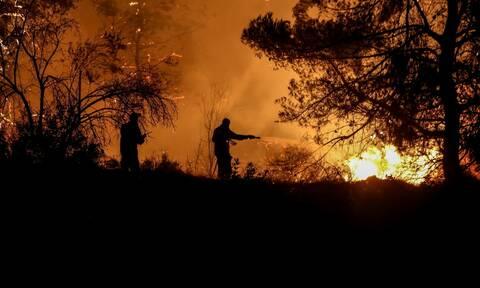 Φωτιά στη Λάρισα: Πυρκαγιά σε δασική έκταση στην περιοχή Κοκκίνω Φαρσάλων