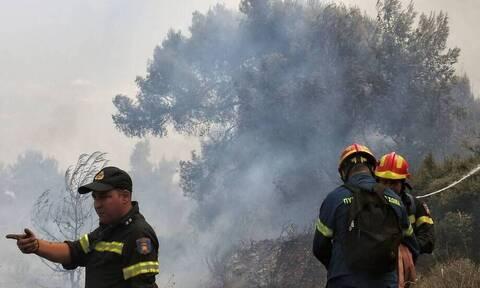 Λάρισα: Φωτιά στα Φάρσαλα