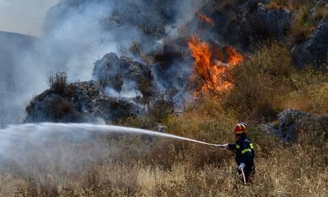 Θεσσαλονίκη: Φωτιά μαίνεται στον Λαγκαδά