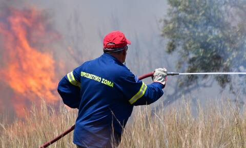 Νέα φωτιά στη Μεσσηνία - Δύο πύρινα μέτωπα σε εξέλιξη