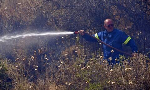 Θεσσαλονίκη: Υπό έλεγχο η φωτιά στον Λαγκαδά