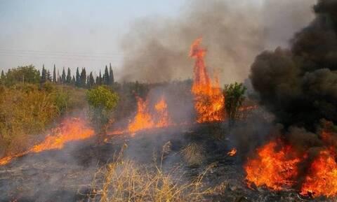 Φωτιά ΤΩΡΑ στη Νεμέα Κορινθίας: Επιχειρούν ισχυρές δυνάμεις