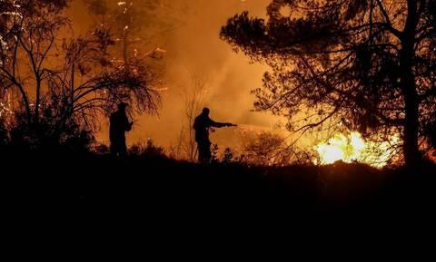 Φωτιά στην Κορινθία: Πυρκαγιά σε δασική έκταση στην περιοχή του Αγίου Βλάση Σοφικού