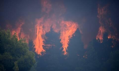 Φωτιά στην Κορινθία: Στις φλόγες το Σοφικό - Εκκενώνονται οι τρεις οικισμοί και ένα μοναστήρι