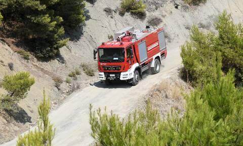 Ενίσχυση πυροσβεστικών δυνάμεων σε Σκιάθο, Σκόπελο: Στην κατηγορία 4 οι Σποράδες