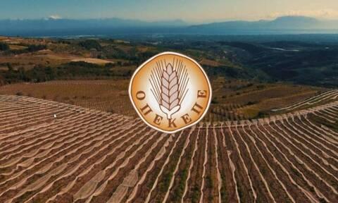 ΟΠΕΚΕΠΕ: Πληρώνει 2,2 εκατ. ευρώ - Ποιοι είναι οι δικαιούχοι αγρότες