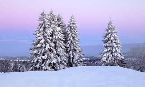 Μερομήνια: Βγήκαν και φέρνουν χειμώνα με πολλά χιόνια και λευκά Χριστούγεννα