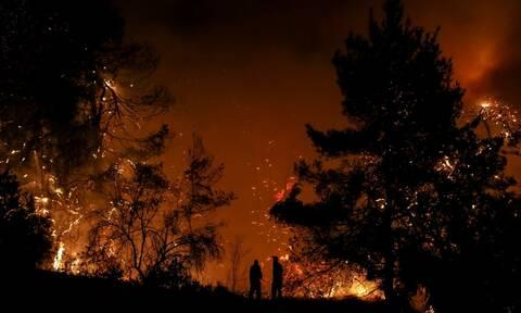Φωτιά στην Κεφαλονιά: Σε πλήρη εξέλιξη η μεγάλη πυρκαγιά στην περιοχή Αννινάτα