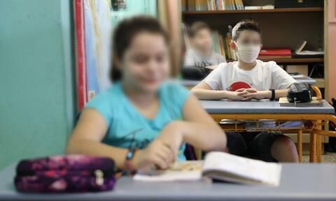 Κορονοϊός: «Καμπανάκι» Λινού - Τα μέτρα στα σχολεία δεν αρκούν (vid)