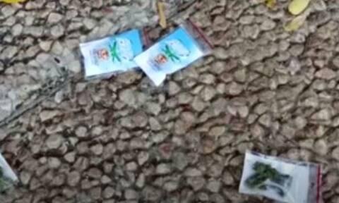 Τελ Αβίβ: Χαμός σε κεντρική πλατεία - «Έβρεξε» κάνναβη (vid)