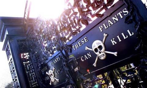 Ο «κήπος του θανάτου» - Γιατί όσοι μπαίνουν λιποθυμούν (pics)